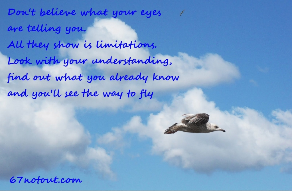 jon-livingston-seagull-quote
